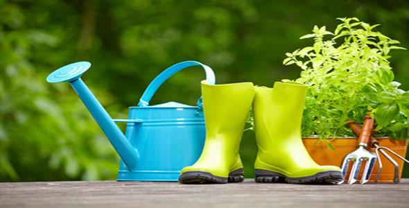 What's The Best Organic Gardening Fertilizer?